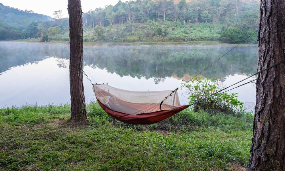Best Camping Hammock with Mosquito Net of 2019